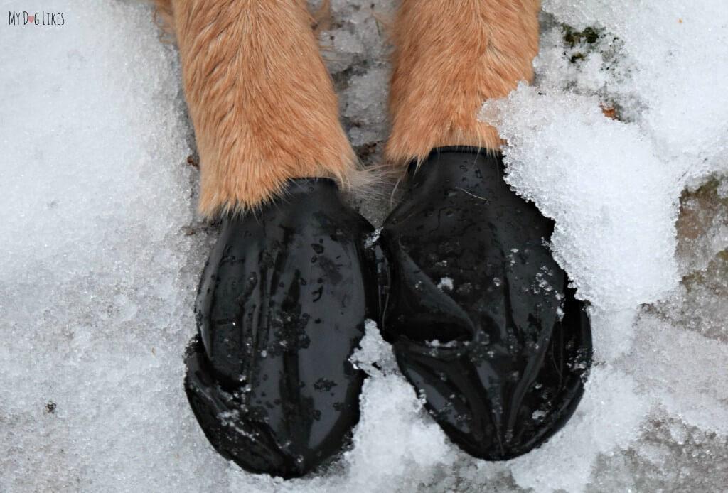 Snow Pawz Booties