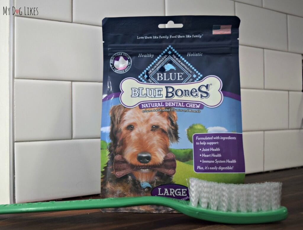 Blue Bones natural dental chews help to clean dogs teeth and freshen breath