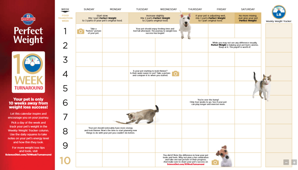 The Hills 10 Week Turnaround Calendar is a great tool to help your pet reach their weight loss goals
