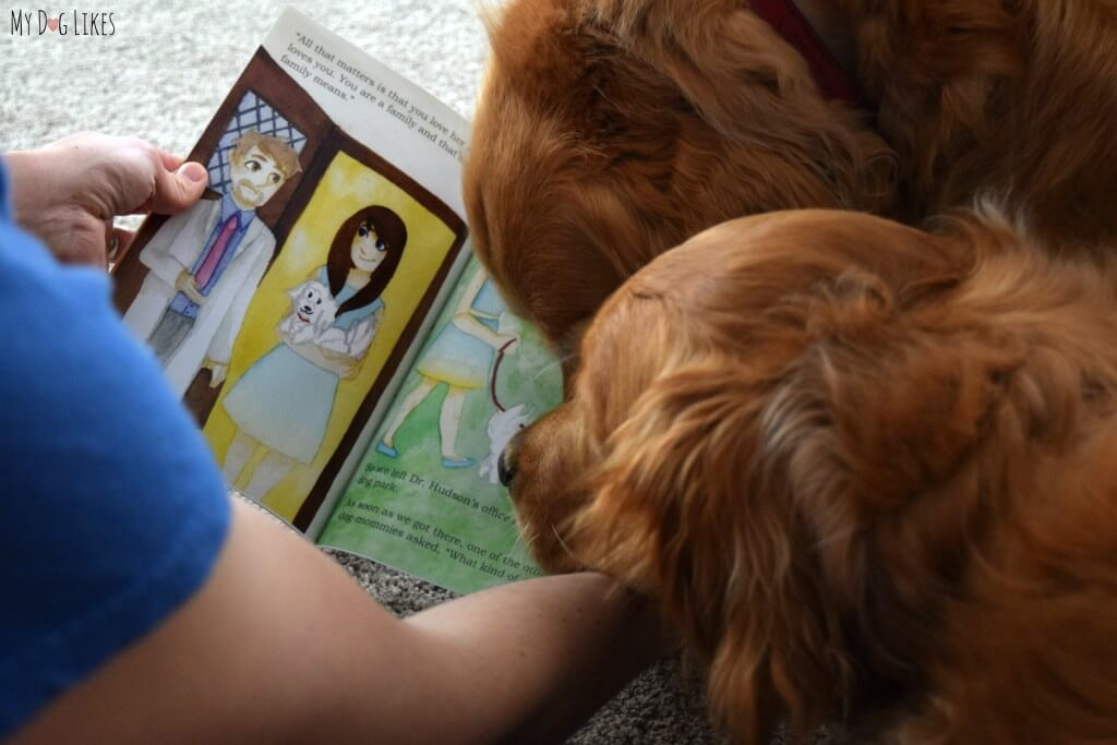 "Reading ""What Kind of Dog Am I?"" Childrens Book About Adoption"