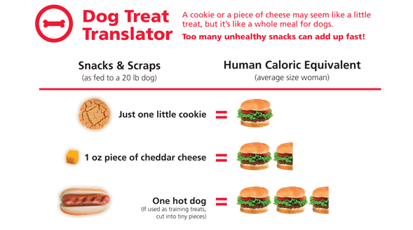 It is important to keep in mind the caloric equivalent of human food for dogs - This treat translator graphic from Hills Pet can help!