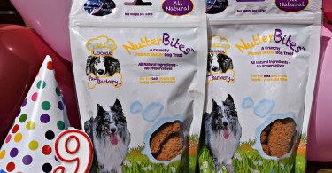 MyDogLikes reviews Paws Barkery NutterBites as a part of Harley's Birthday party celebration!