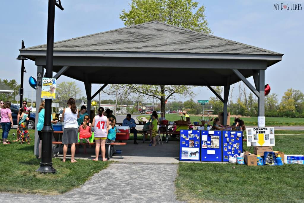 A pavilion at Kershaw Park in Canandaigua was a great spot for the Paws in the Park event!
