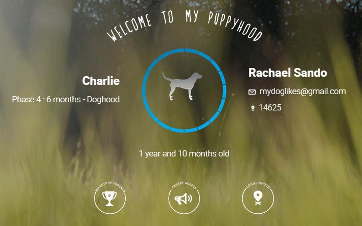 Charlies profile page on puppyhood.com