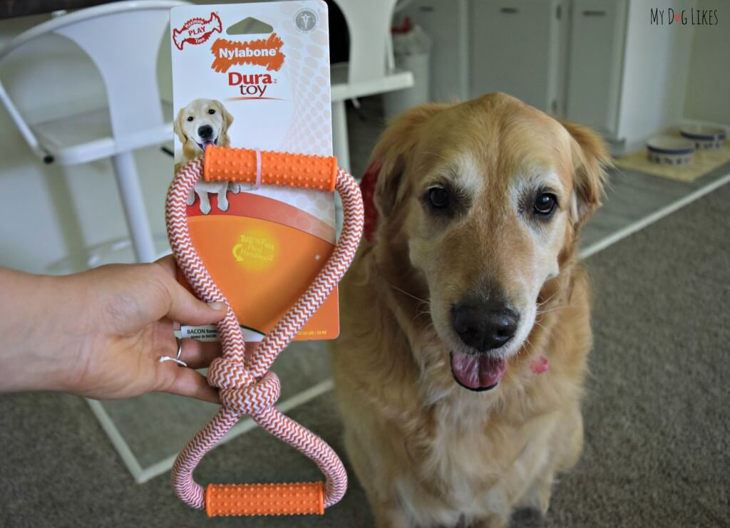 MyDogLikes reviews the Nylabone Dura tug toy from our Paw Pals with Annie subscription box