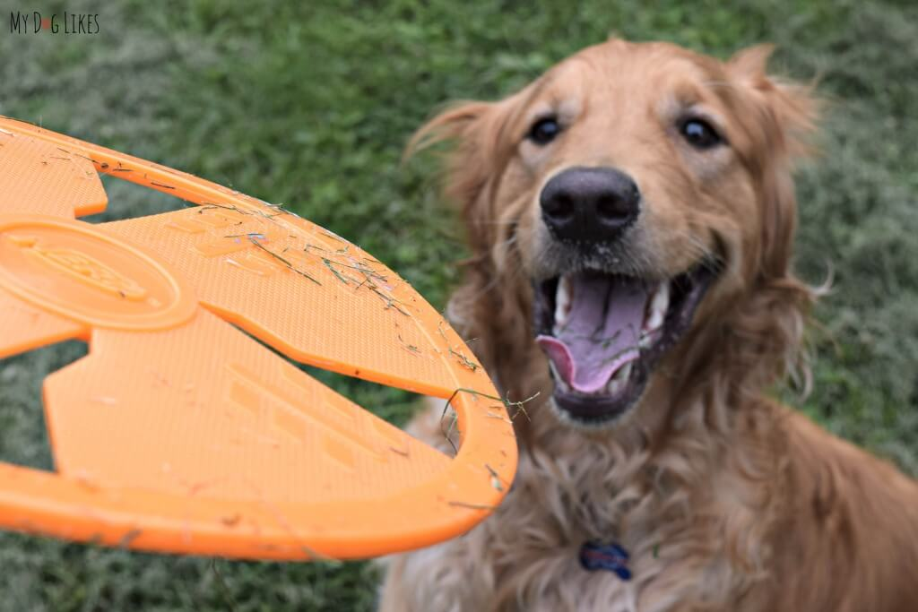 A little bit of grass is no big deal because this NERF frisbee is so easy to clean.