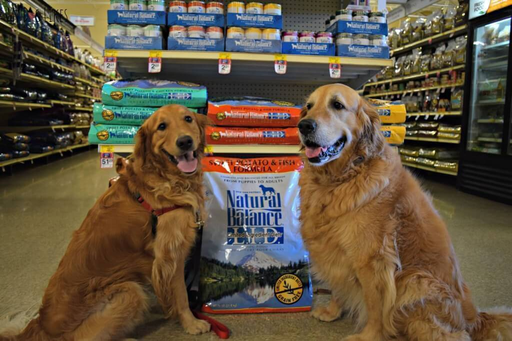 Harley and Charlie posing with their favorite Natural Balance Dog Food at PetSmart!