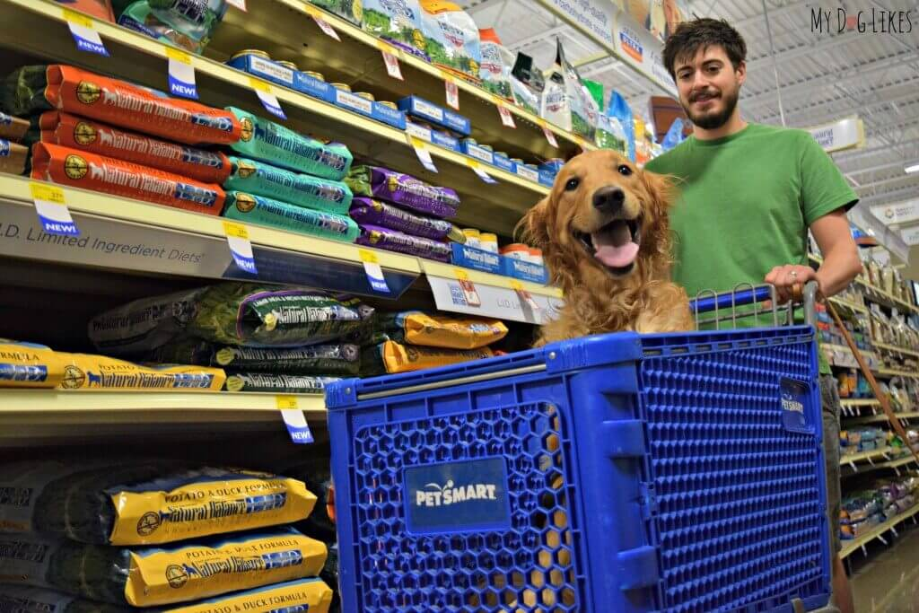 Looking for stores that allow dogs? Check out your local PetSmart! Here is Charlie riding around in the cart and doing a bit of shopping!