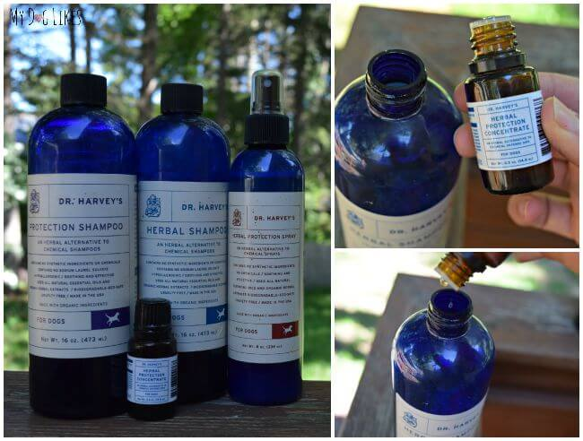MyDogLikes takes a look at the Natural Bug Repellent line from Dr. Harvey's. These products provide great all-natural pest protection for dogs.