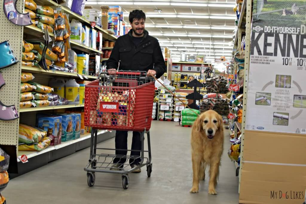 Shopping at Tractor Supply in Macedon, NY