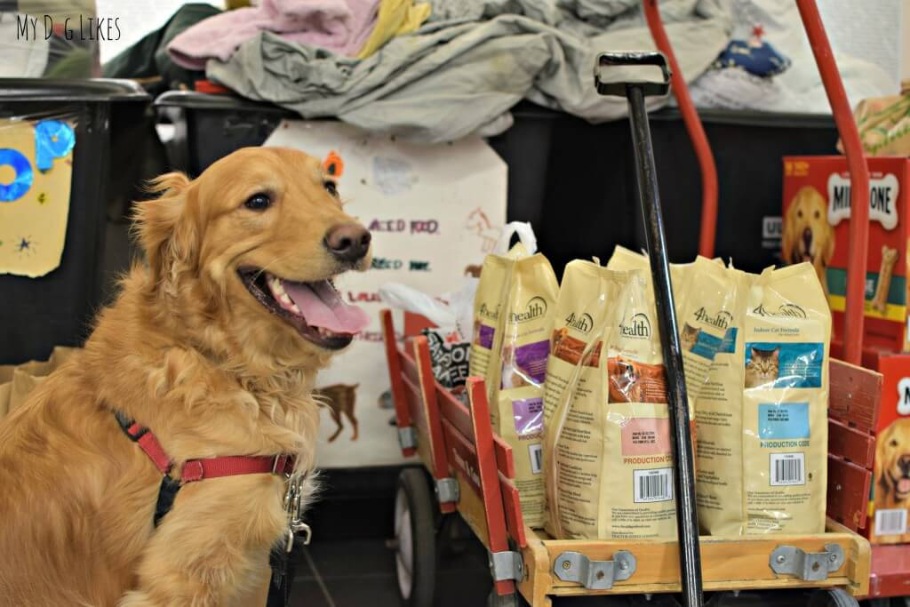 4Health dog food is available at your local Tractor Supply