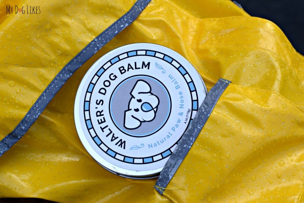 Protect your dog from the elements with Walter's Dog Balm!