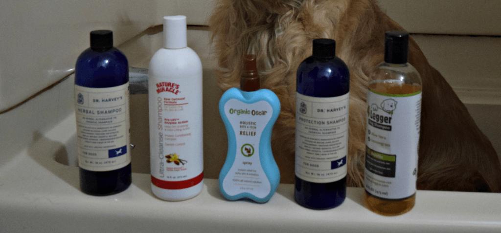 Choosing the best dog shampoo