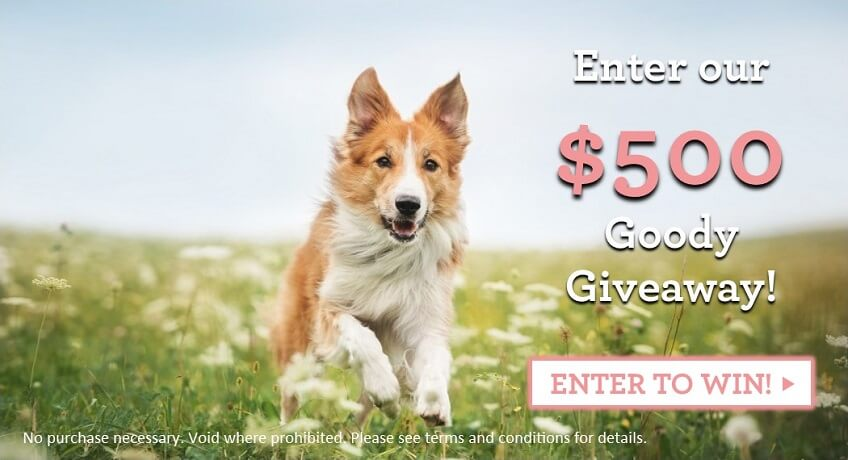 Yuppy Puppy City Kitty $500 Giveaway - Enter to win throughout the month of April, 2016!