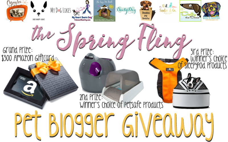Spring Fling Pet Blogger Giveaway Banner