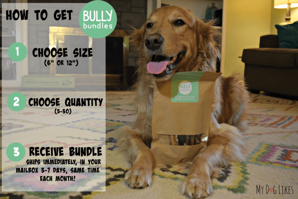 How to order Bully Bundles - a subscription based Bully Stick delivery service
