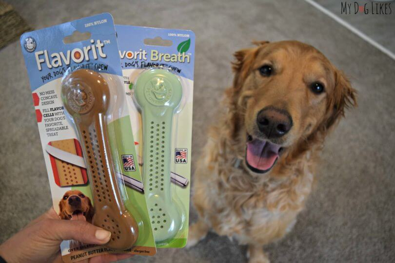 Pet Qwerks Flavorit Bones Review