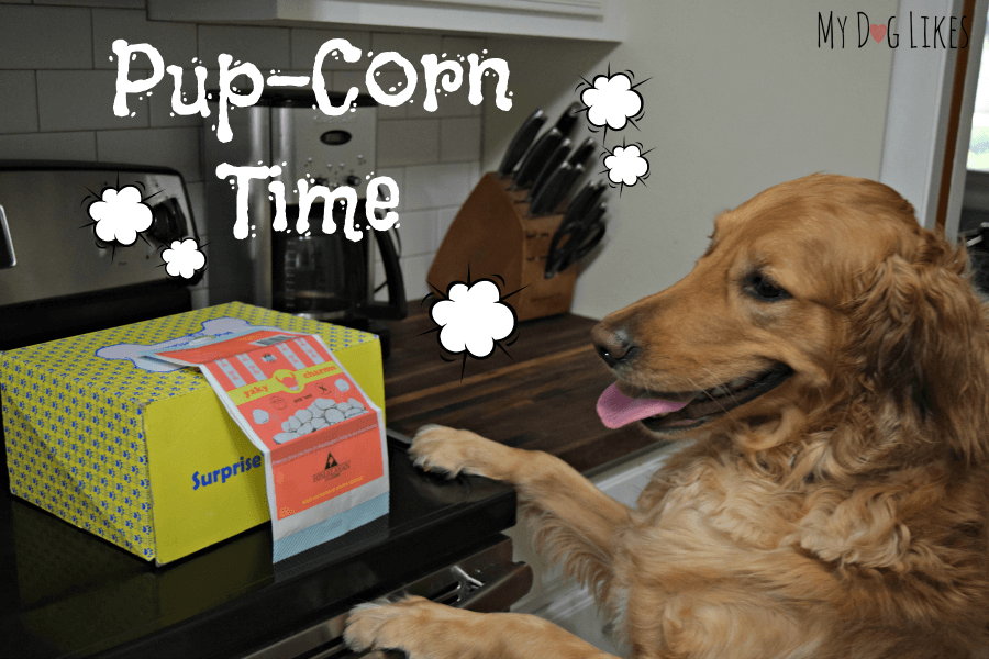 Yaky Charms pup corn from Himalayan Dog Chews