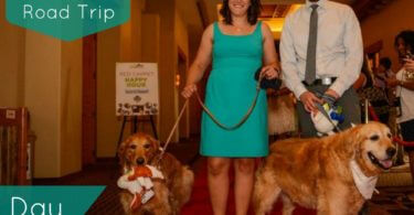 Road Trip Days 4 & 5 - BlogPaws Conference