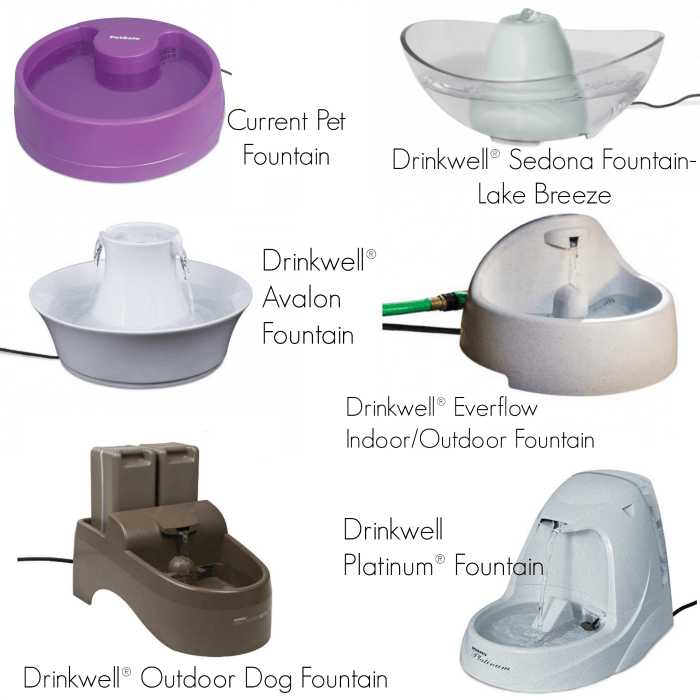 PetSafe water fountains come in a wide variety of shapes and sizes.