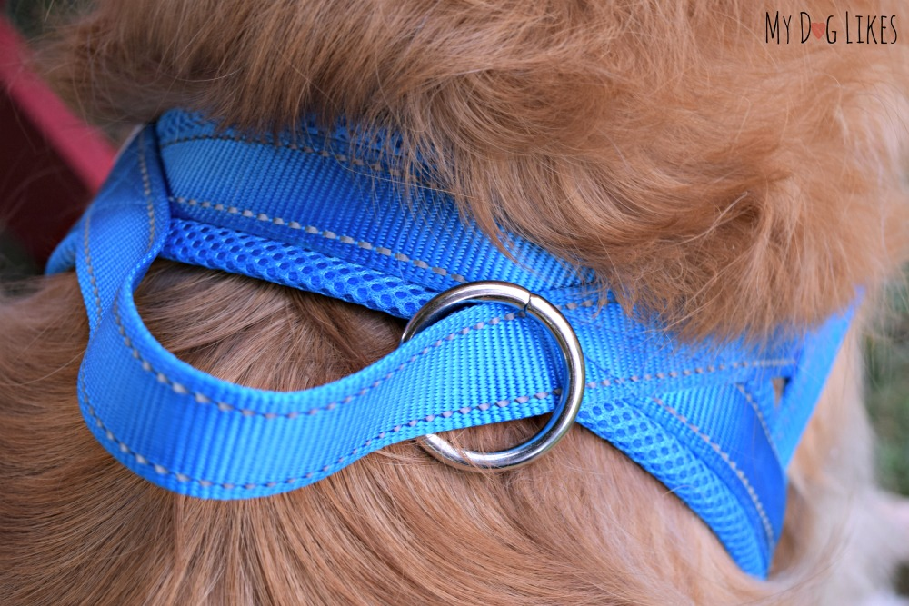 Closeup view of the DEXDOG back attach dog harness.
