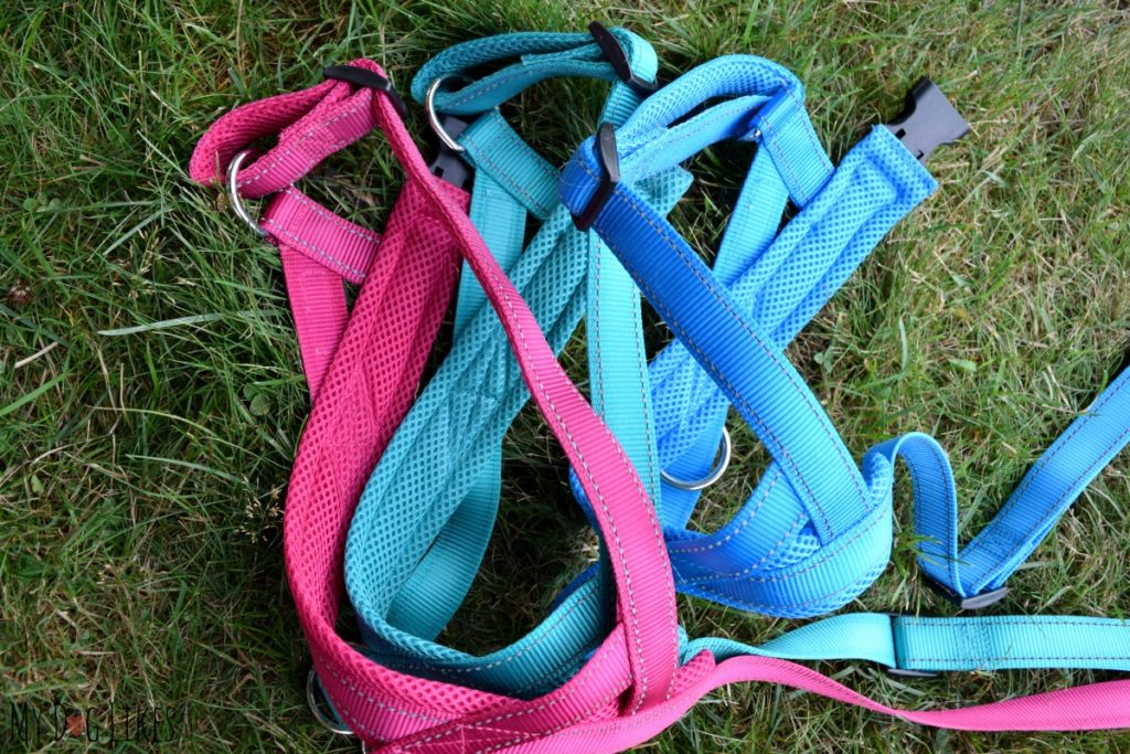 The EZHarness has soft mesh padding on spots prone to wear.