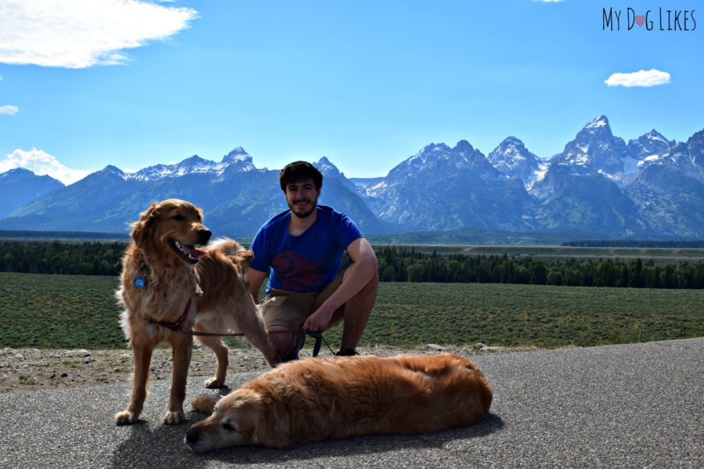 Visiting Grand Teton National Park with dogs.