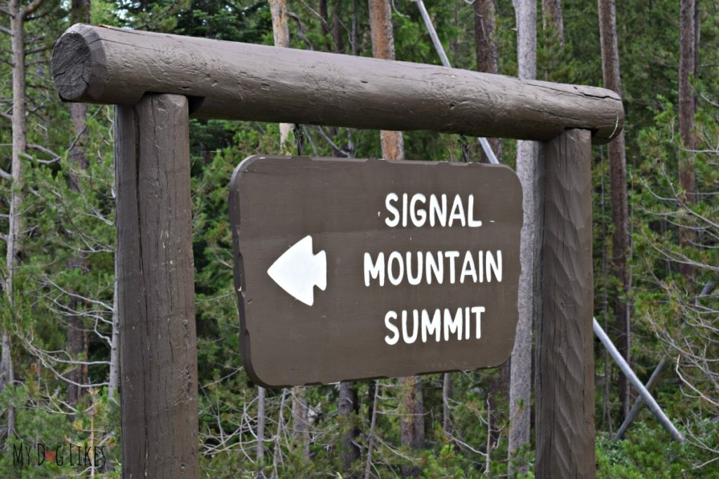 The Signal Mountain road sign across from Jackson Lake