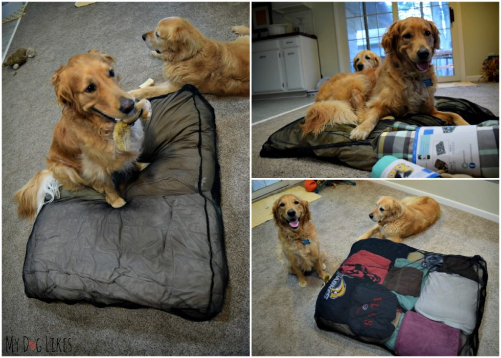 Stuffing the Molly Mutt Bed with pillows, blankets, towels and clothes!
