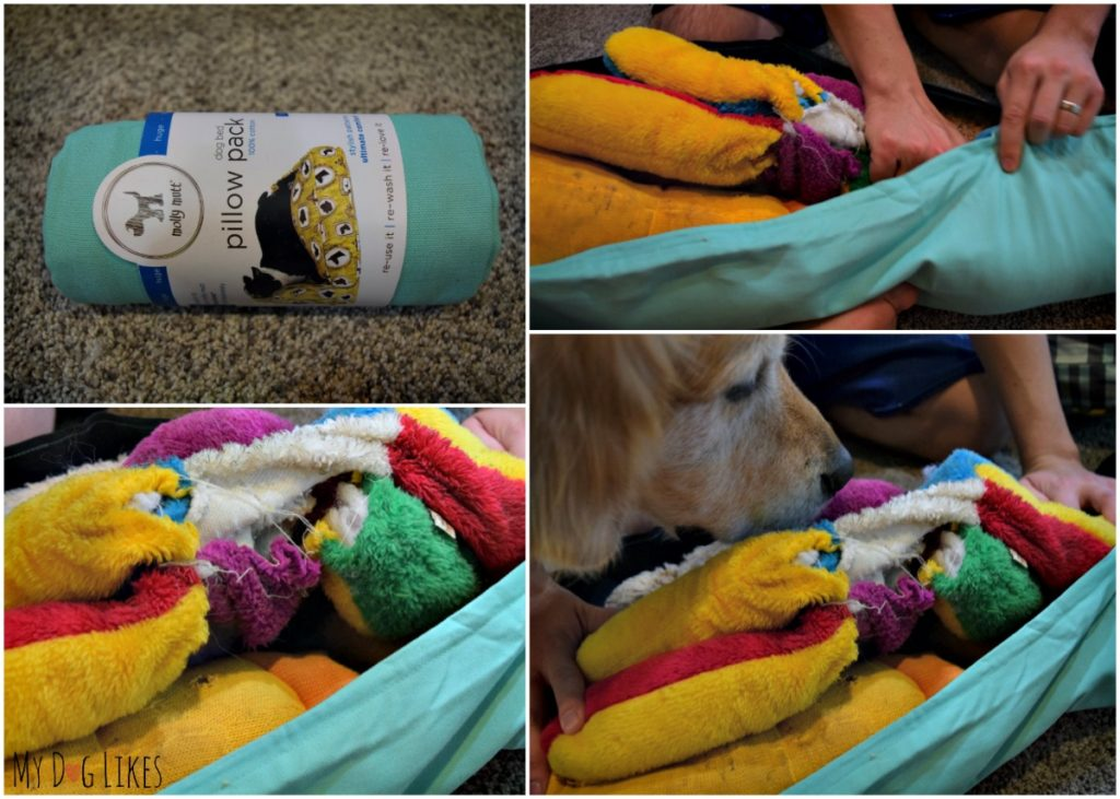 Stuffing the Pillow Pack with worn out and destroyed stuffed dog toys.