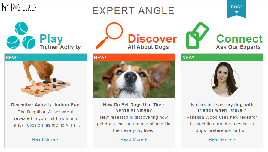 Screenshot of the activities dashboard inside the Dognition membership area.
