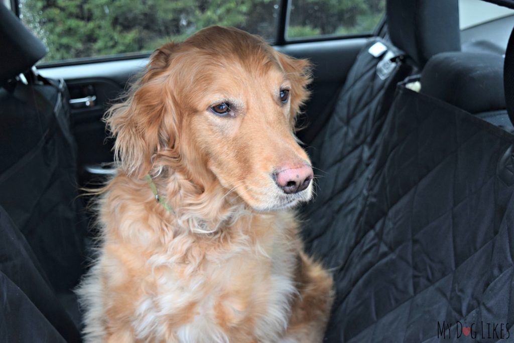 A quality seat cover is a necessity for traveling with dogs!