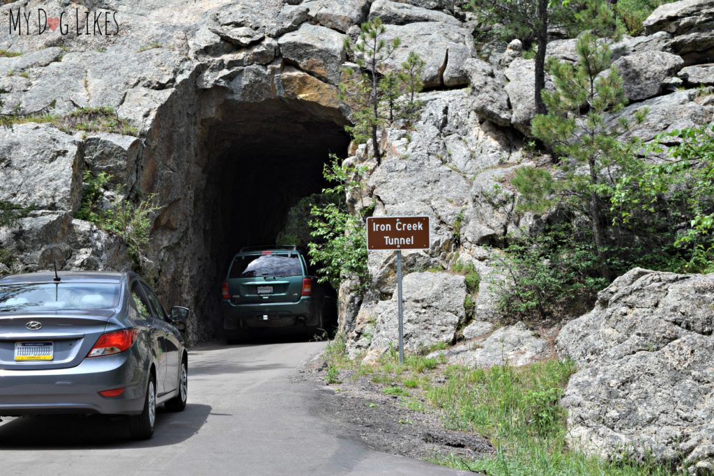 Driving through the Iron Creek Tunnel on Needles Highway