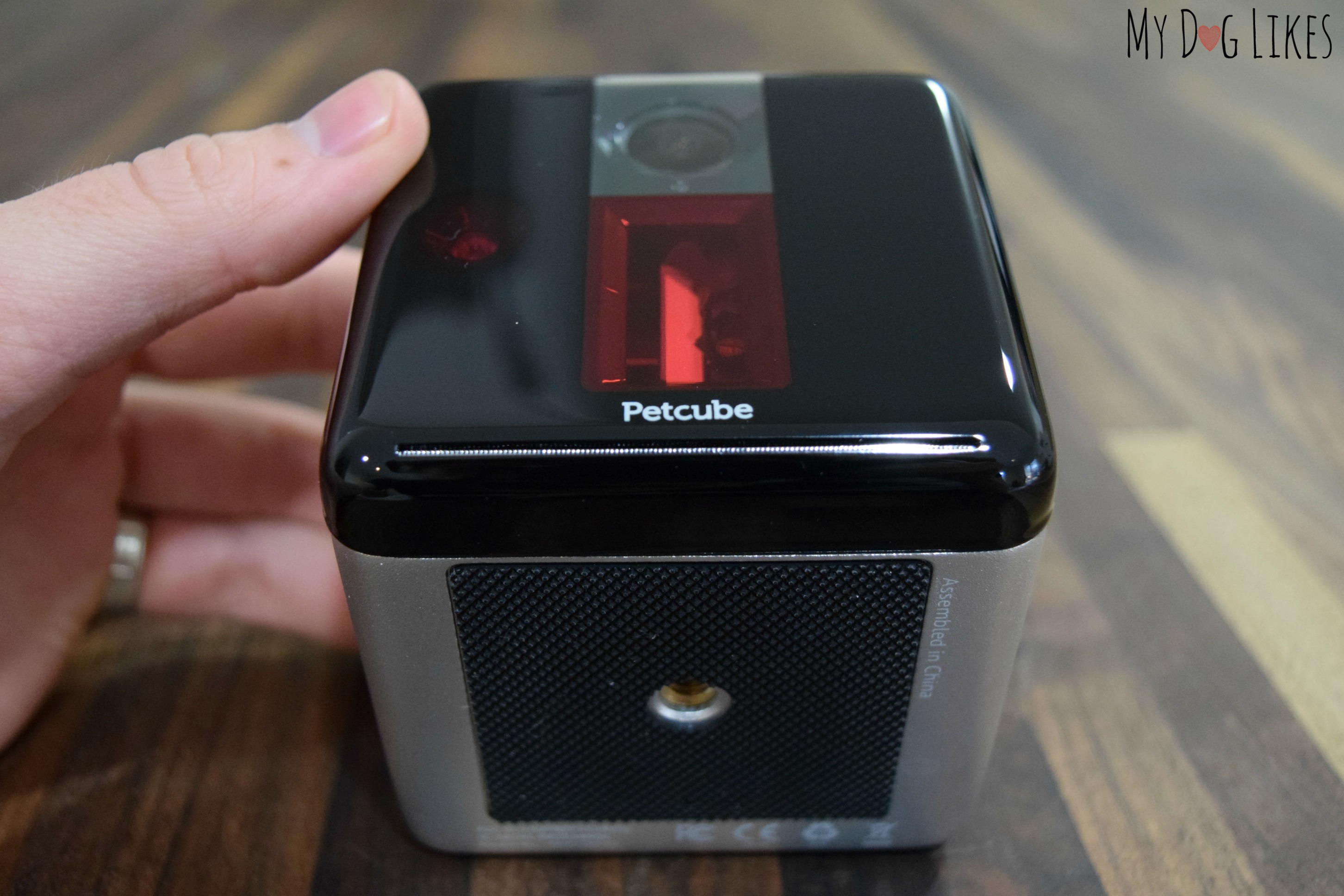 Petcube Review Interacting With Your Pets When You Re