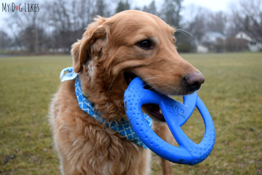 The WO Disc is flexible yet tough enough to withstand some heavy chewing and stretching