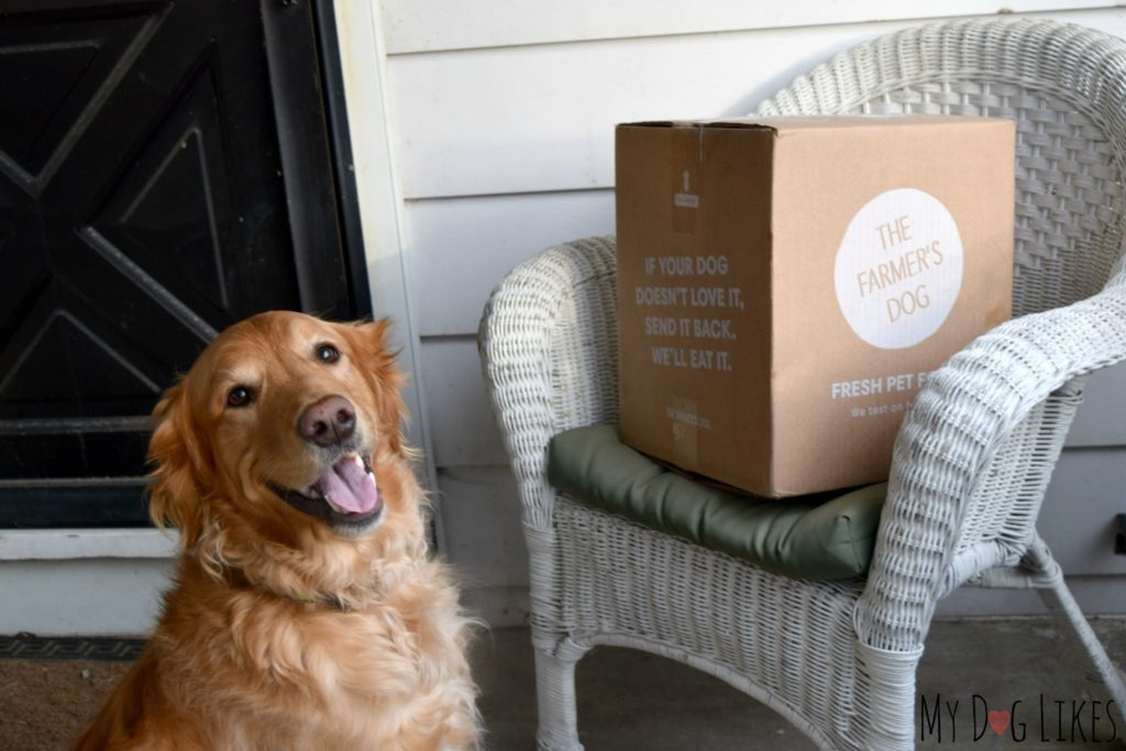 Never worry about running out of food with The Farmer's Dog subscription food service!