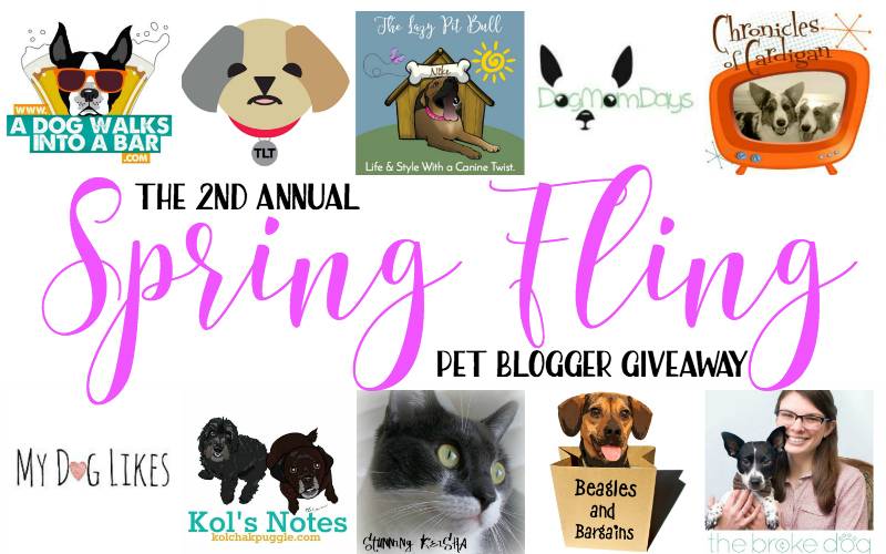 Header image for 2017 Pet Blogger Giveaway