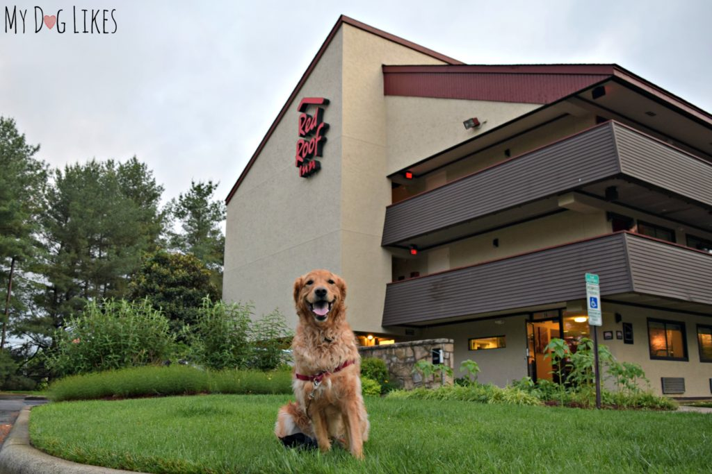 Staying at the Red Roof Inn West Asheville location