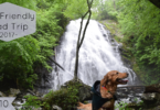 On day 10 of our road trip we explore 2 Blue Ridge Parkway dog friendly trails