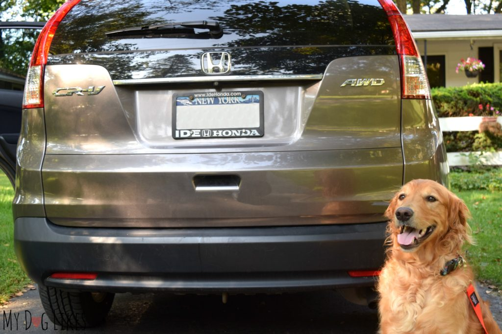 Pet Barrier for Honda CRV