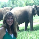 Mompreneur Mogul Lisa Cash Hanson And An Elephant