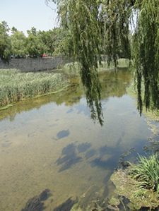 river-near-girona