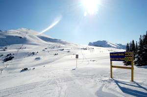 Top 420 Friendly Ski Resorts for Beginners
