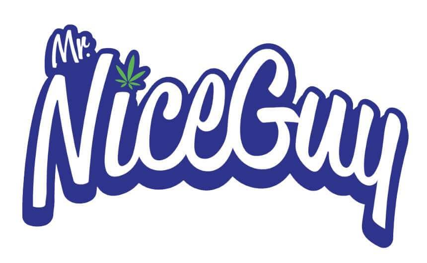 mrnice guy logo
