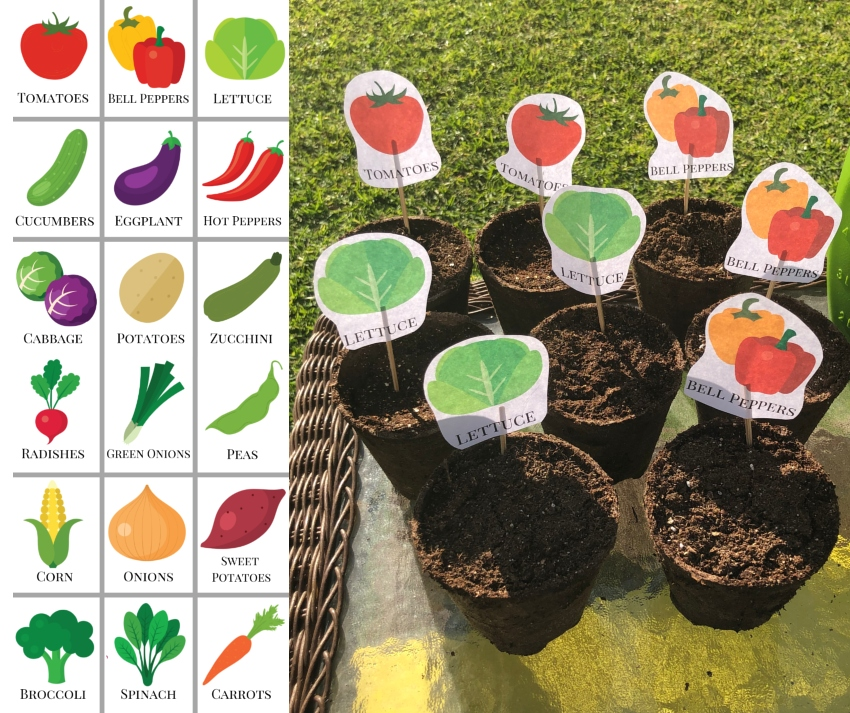 DIY Printable Garden Markers ~ #DIY #freeprintable #gardenmarkers #vegetablegarden