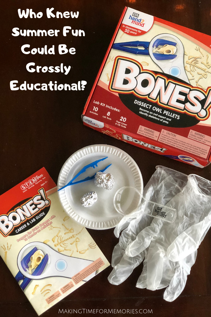 Summer Fun Took a Slightly Gross, but Educational Turn ~ #hand2mind #STEMatPlay #STEMkit #owlpellet #boneskit