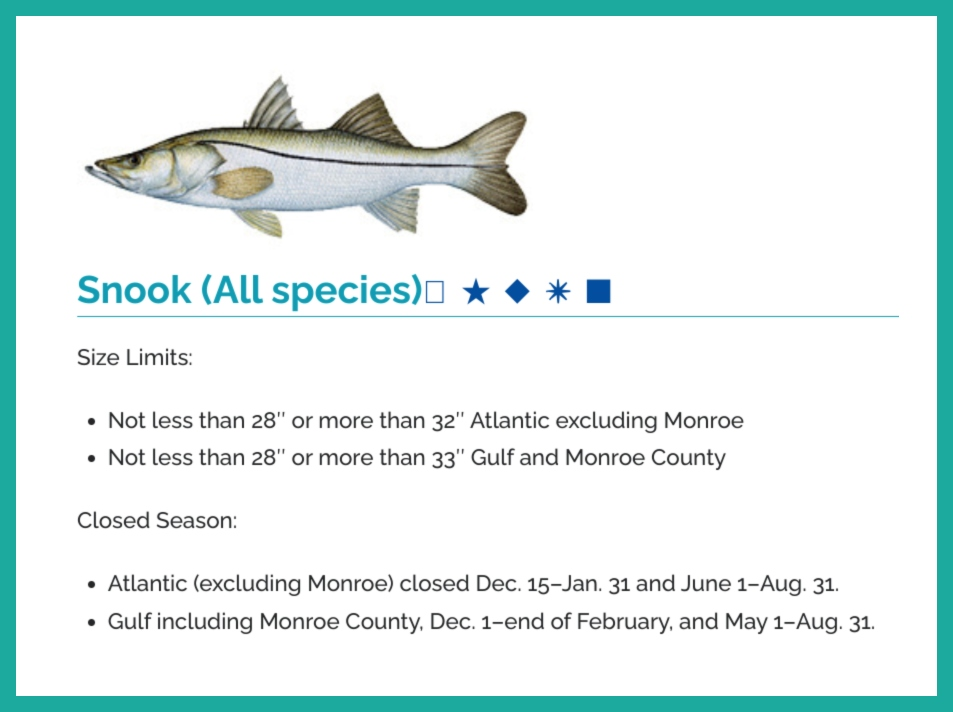 snippet of the fishing rules and regulations for Snook in the state of Florida