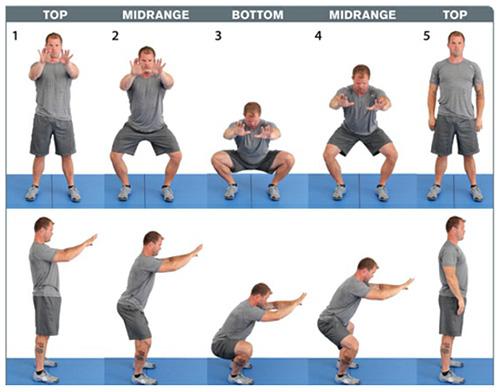 pic-fitness-squat