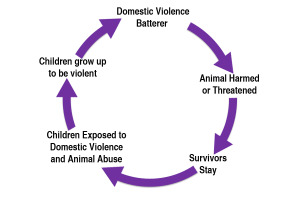 DV - AA Cycle of Abuse