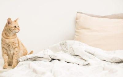 Top Tips to Sleep Well